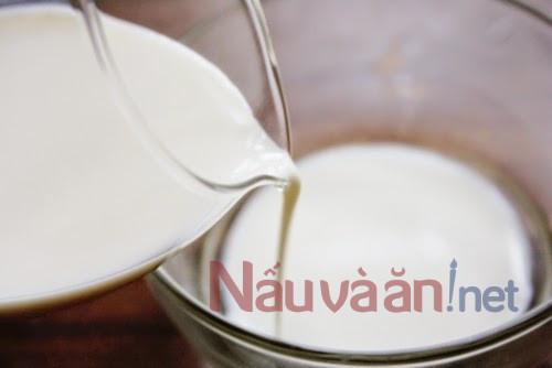 cho 110 ml sữa tươi, đường và men nấm vào tô