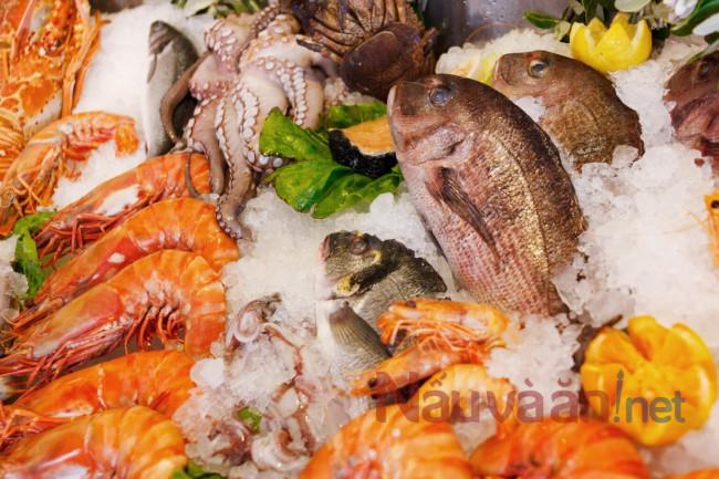 cá hải sản gây ra dị ứng cho trẻ em
