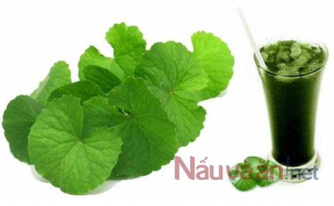 Loại rau mọc bờ mọc bụi nhưng cực giàu dưỡng chất, không thể không bổ sung